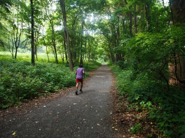 A Non-Obvious Outdoor Guide to New York