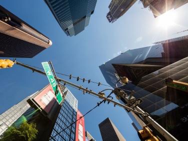 Bird-friendly buildings bill takes flight in City Council